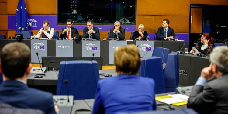 Presentació de les propostes legislatives de Minority Safepack al Parlament Europeu, 2019.
